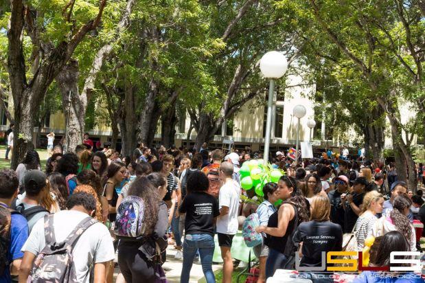 Feria Asociaciones 16 2