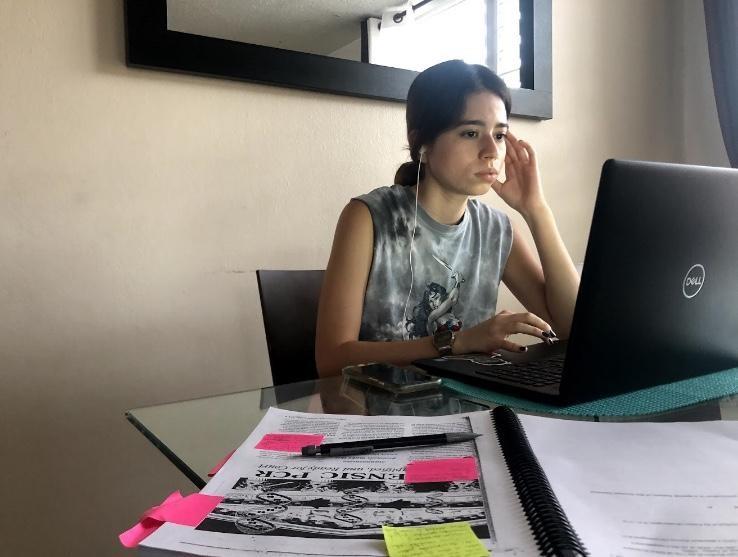 la estudiante de la Universidad de Puerto Rico Chantal A. Ferrer le preocupa que las clases remotas puedan generarle rezagos que la afecten en el futuro.